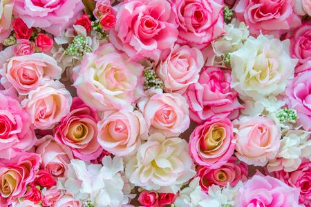 nourish: Soft color Roses Background