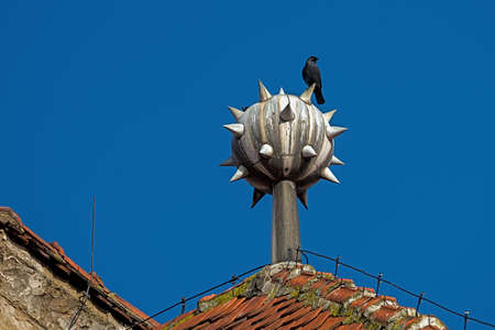 conductor electricity: Raven on a lightning rod on top of the house