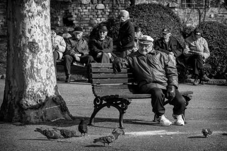 retirees: Belgrade, Serbia - February 27, 2016: Retirees enjoy the sun in the park on a bench and looking pigeons