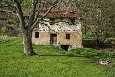 walnut tree: Old abandoned water mill with walnut tree Stock Photo