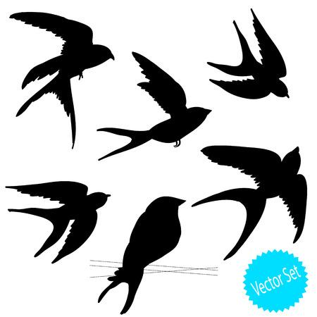 animal limb: set of birds silhouettes