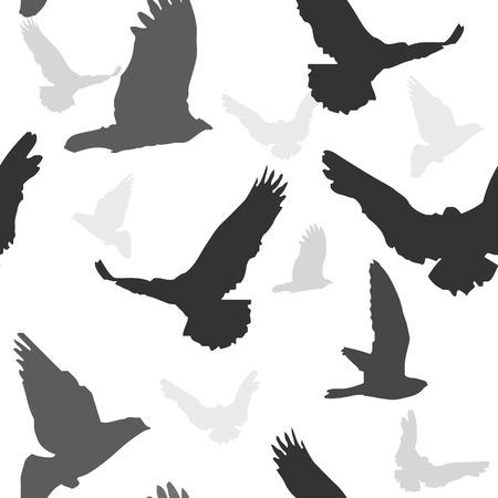 Vector birds background seamless pattern. Stock Vector - 29200056