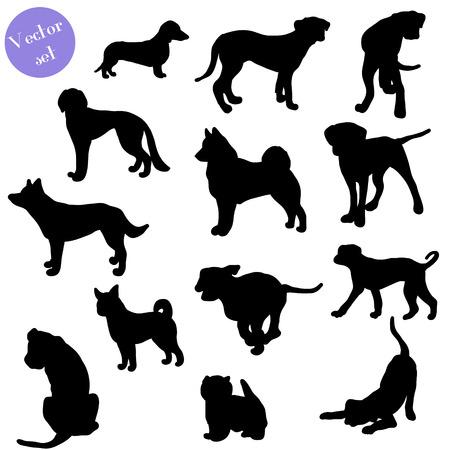 perro boxer: Conjunto de silueta de perros, Vector. Grande para el diseño