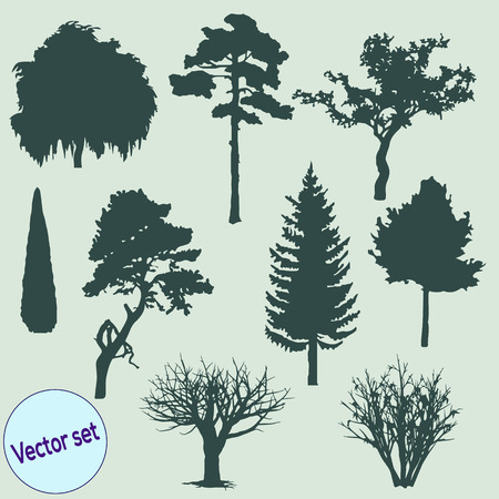 Vector illustration of tree silhouettes. Vector
