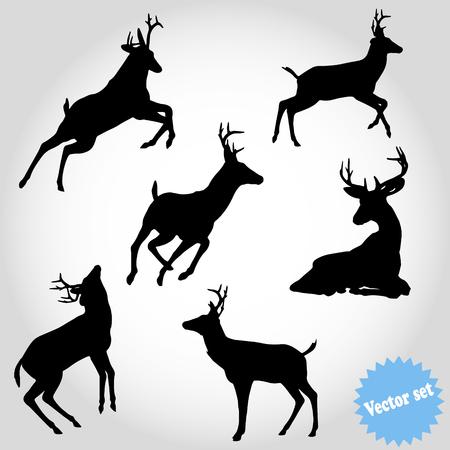 Vector set silhouette deer on white background.