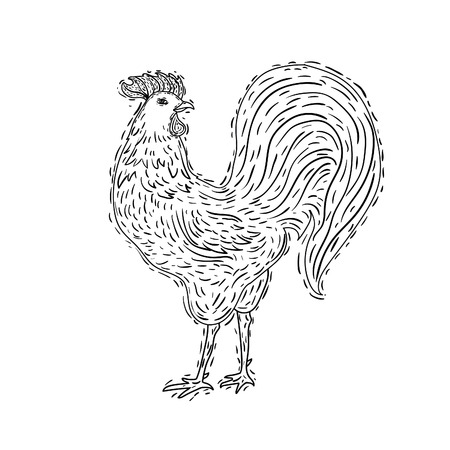 hand-drawn ornamental style rooster. Great for print, Holidays design. Иллюстрация