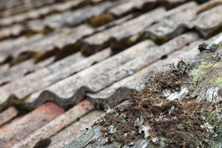 Old roof tiles with old plank and mold photo