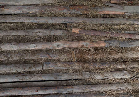 Old plank floor ina a barn with hay Stock Photo - 11717131