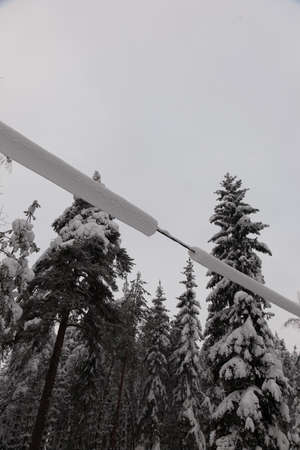 powerline: Powerline covered with thick snow on a cloudy winter day