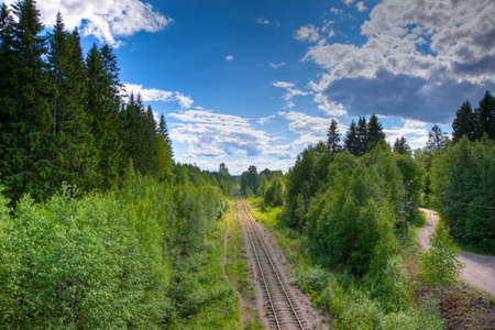 forest railroad: Old railroad leading thru dense forest Stock Photo