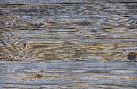 surface of a trunk on a wooden bridge photo