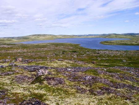 Lake in tundra in the north of Russia in the summer