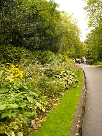 Weg in het Park, Dublin, Ierland Stockfoto