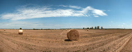Stock Photo of a harvested field with straw bales in summer  photo