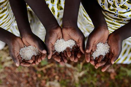 Groep van Afrikaanse Zwarte Kinderen Holding Rice Ondervoeding Verhongering Hunger. Starving Hunger Symbol. Zwarte Afrikaanse meisjes die rijst als een symbool van ondervoeding.