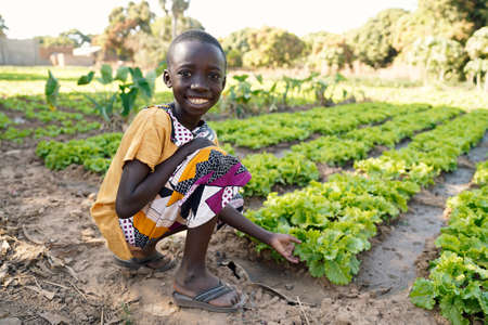 Food for Africa! Young Black Boy Smiling in front of Lettuce Salad Field