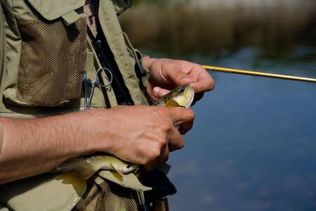 brown trout: Young fisherman releasing brown trout on Sanica river at Bosnia and Herzegovina.