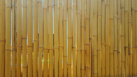 Element fencing, made of barrels of mature bamboo. Stock Photo