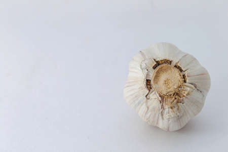 garlic bulb isolated on white background photo