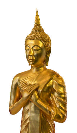 Golden Buddha close up on white background Stock Photo - 14768978