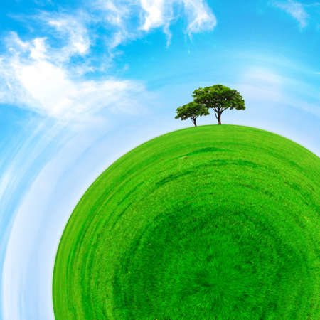 Part of a spherical panorama of a green meadow with trees and blue sky Stock Photo - 19355070