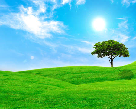 Summer landscape with cloudy sky, green grass and trees Stock Photo