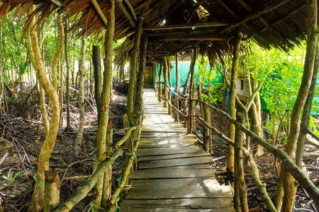 cheated: Wood bridge go to mangrove forest Stock Photo