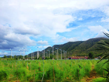 wind force wheel: Wind turbines farm in thailand