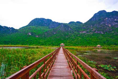 Wooden pavilion and wooden bridge in lotus lake, Samroiyod national park, thailand photo
