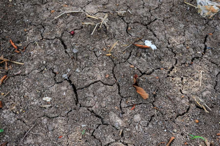 Cracked soil ground Stock Photo