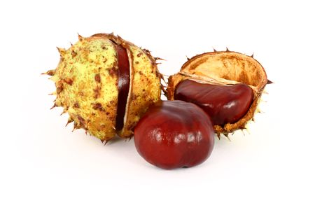 Wild chestnut in shells, gifts from autumn, isolated Stock Photo - 6024679