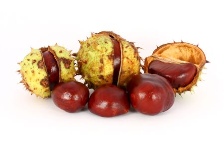 Wild chestnuts, gifts from autumn, isolated Stock Photo - 6024677