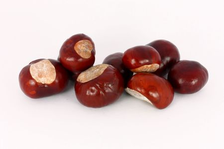 Wild chestnut gifts from fall, isolated Stock Photo - 6024580