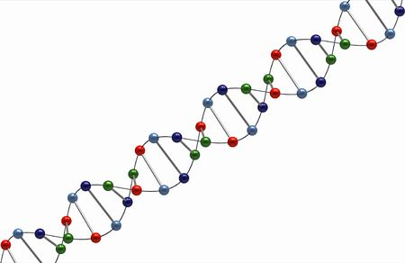 Render of DNA isolated on white background Imagens - 7790559