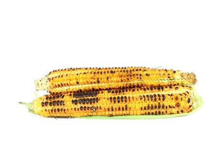 Grilled sweet corn cob isolated on white photo