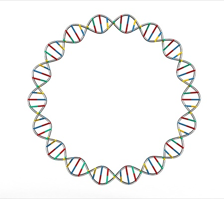 Render of DNA isolated on white background Stock Photo - 9491881