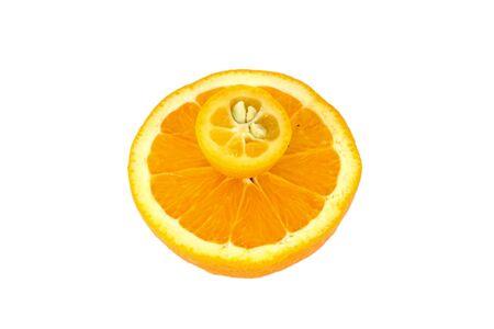 midget: kumquat midget orange and orange isolated on white