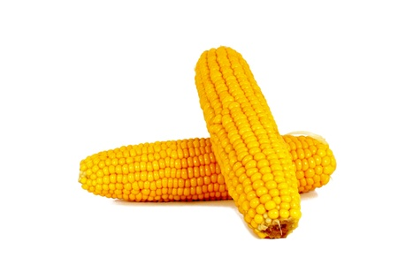 Cooked corn cob sweetcorn isolated on white Stock Photo