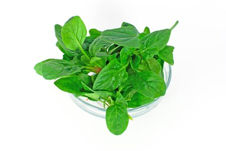 Spinach in glass bowl isolated on white photo