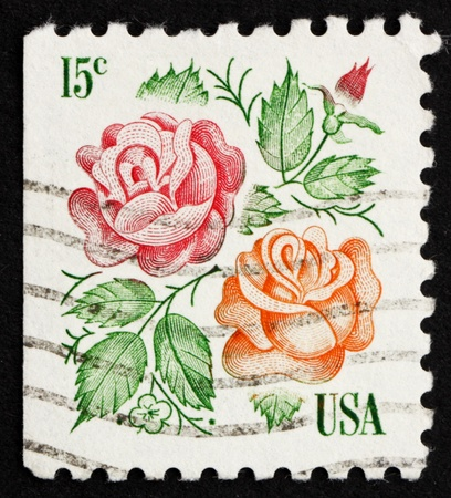 UNITED STATES OF AMERICA - CIRCA 1978: a stamp printed in the United States of America shows Rose flower, circa 1978 photo