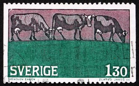 SWEDEN - CIRCA 1979: a stamp printed in the Sweden shows Grazing Cattle in Summer, circa 1979 photo