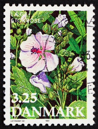 DENMARK - CIRCA 1990: a stamp printed in the Denmark shows Flower of Marshmallow, Endangered Plant Species, circa 1990 Stock Photo - 12042346