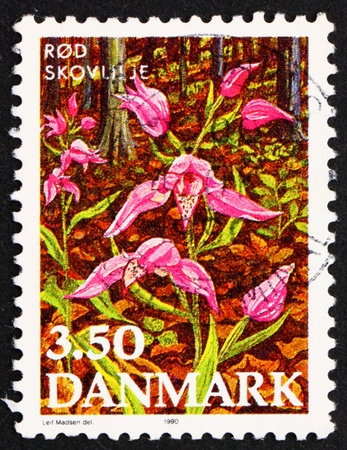 DENMARK - CIRCA 1990: a stamp printed in the Denmark shows Red Helleborine, Endangered Plant Species, circa 1990 Stock Photo - 12042367