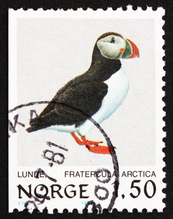 NORWAY - CIRCA 1981: a stamp printed in the Norway shows Atlantic Puffin, Bird, circa 1981 photo
