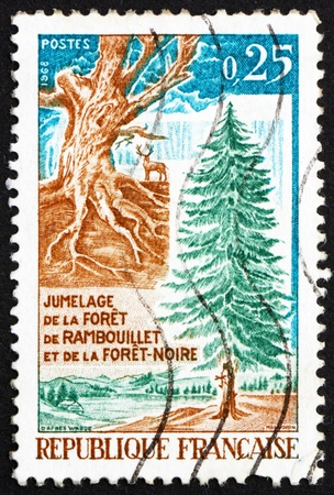 twinning: FRANCE - CIRCA 1968: a stamp printed in the France shows Gnarled Trunk and Fir Tree, Twinning of Rambouillet Forest in France and the Black Forest in Germany, circa 1968 Stock Photo