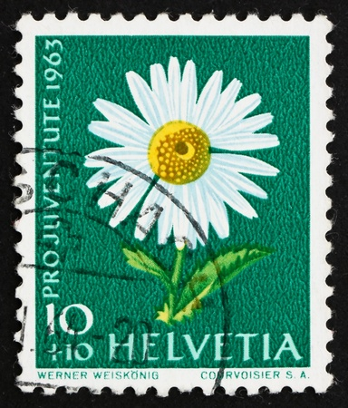 SWITZERLAND - CIRCA 1963: a stamp printed in the Switzerland shows Common Daisy, Bellis Perennis, Flowering Plant, circa 1963
