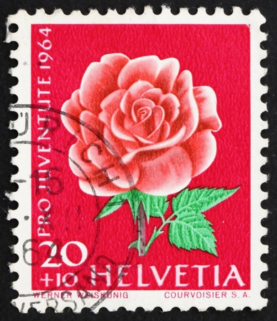 commemorate: SWITZERLAND - CIRCA 1964: a stamp printed in the Switzerland shows Rose, Rosa, Flowering Plant, circa 1964