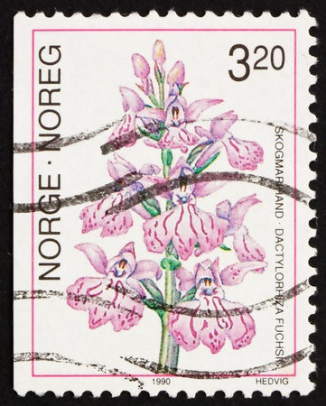 NORWAY - CIRCA 1990: a stamp printed in the Norway shows Common Spotted-orchid, Dactylorhiza Fuchsii, European Orchid, circa 1990 Stock Photo - 13512305