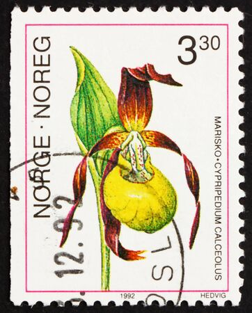 NORWAY - CIRCA 1992: a stamp printed in the Norway shows Lady�s- slipper Orchid, Cypripedium Calceolus, European Orchid, circa 1992 Stock Photo - 13558814