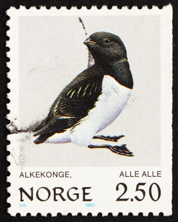 NORWAY - CIRCA 1983: a stamp printed in the Norway shows Little Auk, Alle Alle, Bird, circa 1983